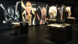 Museum Exposition Fourmille