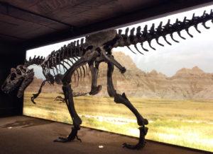 Expo Dinosaures Muséum d'histoire naturelle de la Ville de Genève
