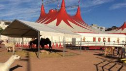 Chapiteau du cirque Nock sur la Plaine de Plainpalais, Genève