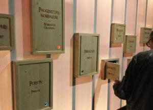 Muséum d'histoire naturelle de la Ville de Genève Exposition temporaire 2019