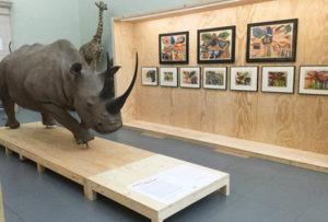 Musée e zoologie Lausanne exposition temporaire entrée libre